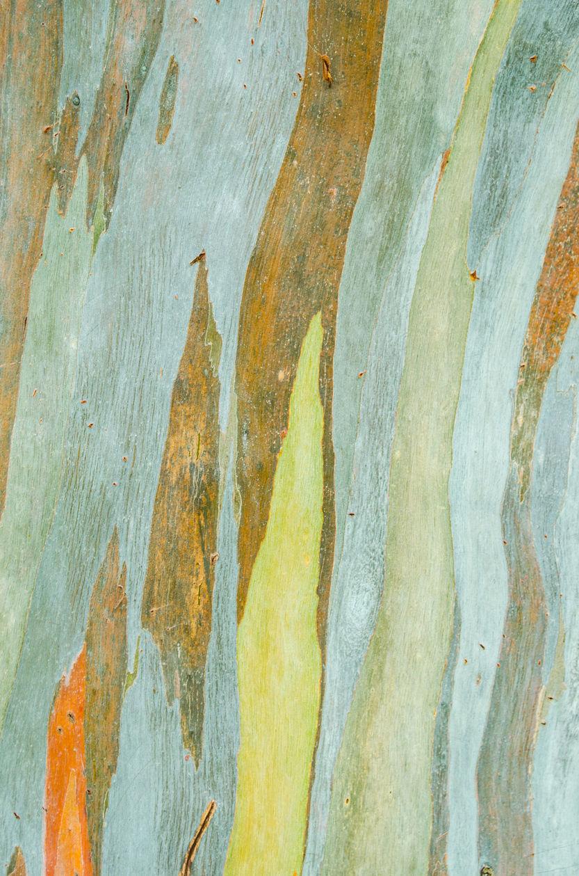 slandLeigh | istockphoto.com